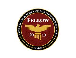2018-naim-fellow-logo